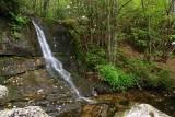 Flat Laurel Creek Trail 2