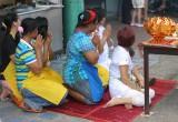 Trang Festival