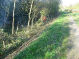 Saturday saw some of us at Site 3 which  involved clearing the canal bed near Cropwell Bishop