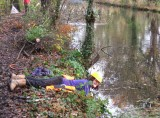 Helen does underwater pruning!