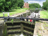 Common Moor Lock