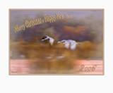 Xmas Card 2006 B3.jpg
