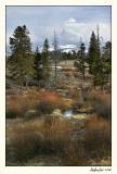 Yellowstone 07-APR12-0123.jpg