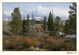 Yellowstone 07-APR12-0124.jpg