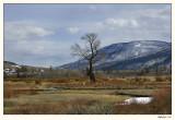 Yellowstone 07-APR12-0159.jpg