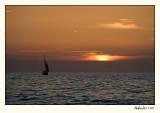 Venice 07-APR26-0014.jpg