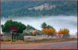 Dawn River Fog 2