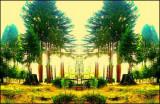 Unbearble Brightness of Treeing