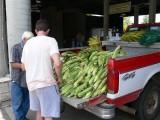 corny truck
