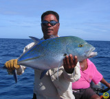 another Blue-fin Trevally
