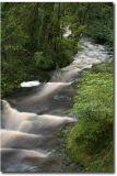Wales136.jpg