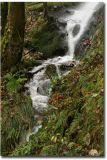 Wales189.jpg