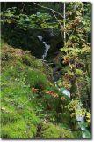 Wales205.jpg