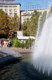 Flower expo at Nikola Pasic Square