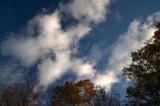 Running Cloud