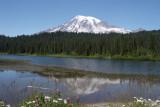 Mt. Rainier and the Olympic Peninsula