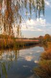 West River Marsh II