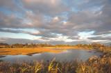 Pond at Meigs Point