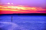 Geelong Sunrise2.jpg