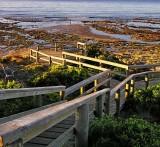 Torquay Boardwalk Victoria Australia.jpg