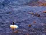 Bells Beach Victoria Australia4.jpg