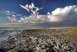 Bedrock Outcrop Pt Noarlunga South Australia.jpg