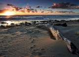 Big Stick Pt Noarlunga South Australia.jpg