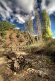 Riverbend Park Clarendon South Australia.jpg