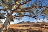 Wilpena Pound Flinders Ranges South Australia.jpg
