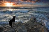 Pt Noarlunga Sunset3.jpg