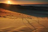 Peron Dunes Sunrise_4.jpg