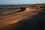 Peron Dunes Sunrise_8.jpg