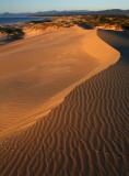 Peron Dunes Sunrise_16.jpg