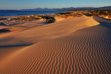 Peron Dunes Sunrise_25.jpg