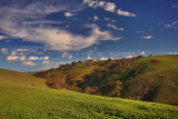 Myponga Hill.jpg