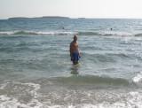 BFT swims