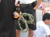 olive wreaths to the all finishers.