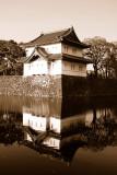 Japanese Reflection
