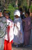 Wedding march in Togo Shrine
