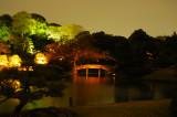 Night lit bridge