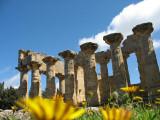 Temple of Zeus in Cyrene3.jpg