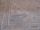 Mosaic Cyrene.jpg
