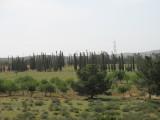 Al Khums5.jpg