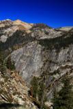 SequoiaNP_8388.jpg