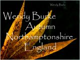 Wendys English Autumn Fall