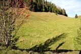 Autumn Jura...
