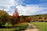 Mr. Autumn likes romantic walks...