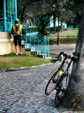 What does a cyclist in the early morning in a corner of a desert public park ?