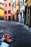 Fragments of Lucca in a puddle