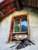 A secret shared between a window and a rook...